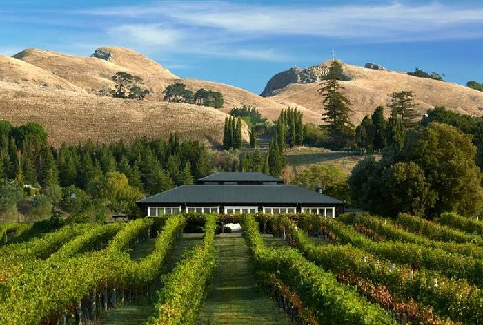 New Zealand's food and wine event